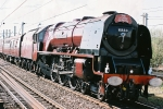 Duchess Of Sutherland